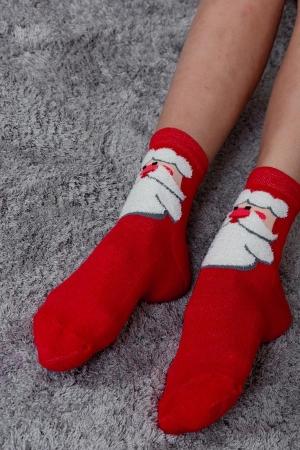 Носки Сугроб женские полуплюш