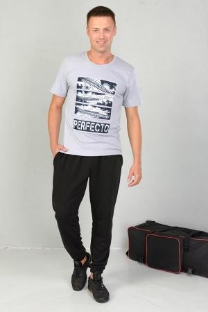 Мужская футболка 36063