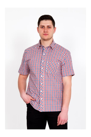 Рубашка мужская Оливер 3373